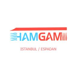 همگام(همتا)